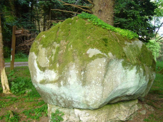 Burren Forest Pedestal Rock