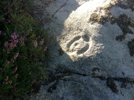 Cavan Burren Rock Art