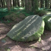 Rock Art Cavan Burren Woods