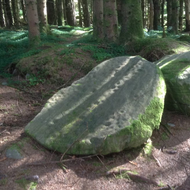 Cavan Burren woods rock art