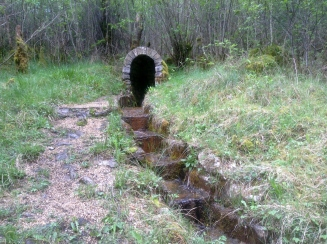 Badgers Well