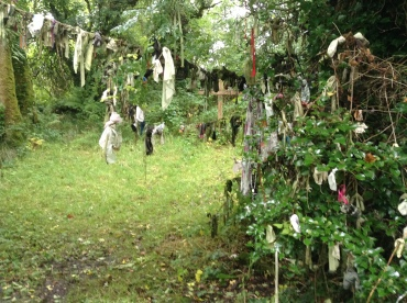 Cloutie Tree Holy Well Leitrim