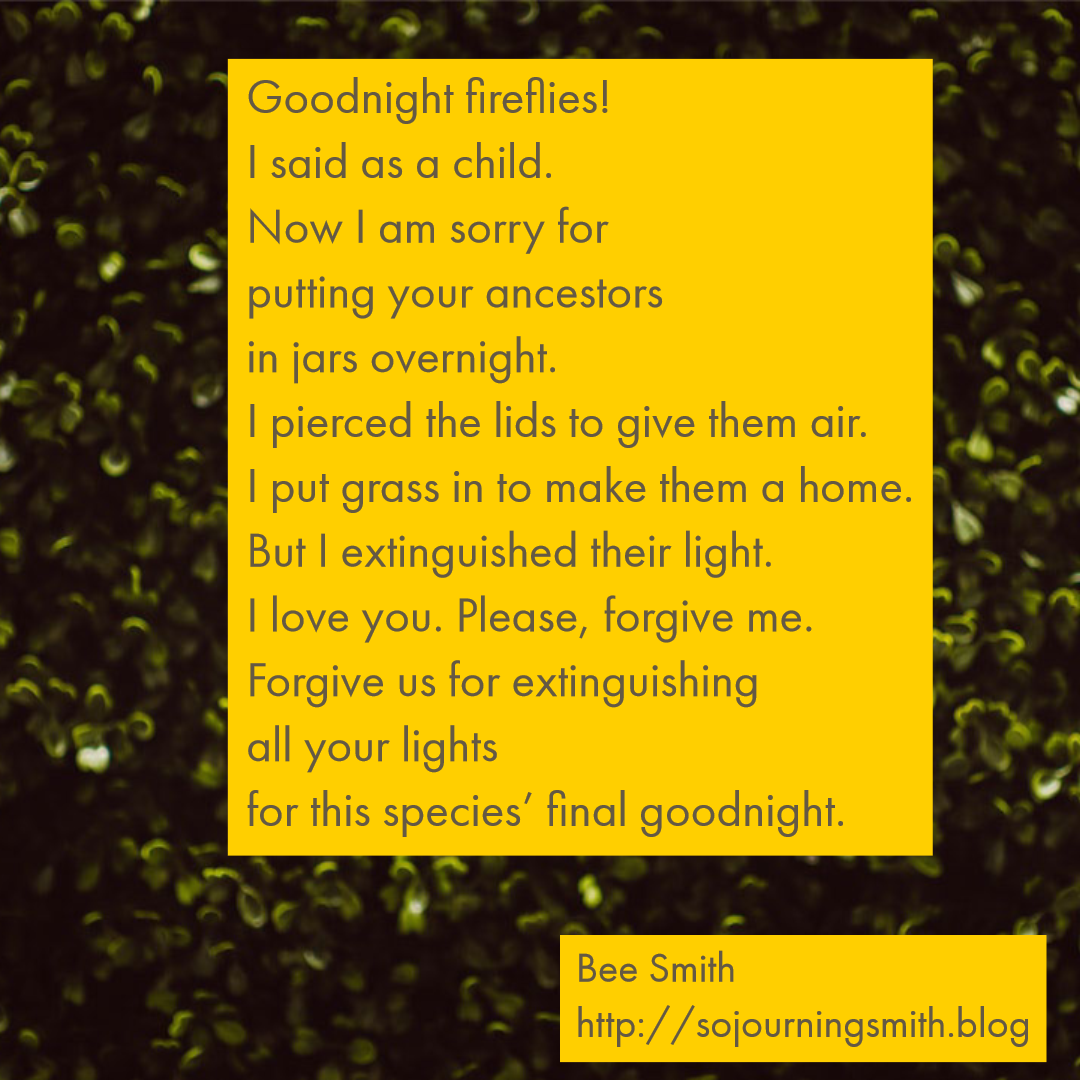 goodnight fireflies