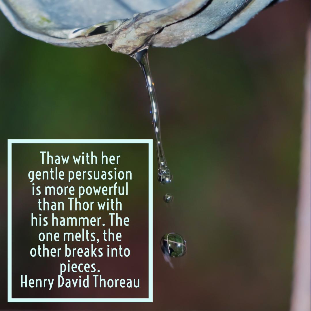 Thaw Thor Thoreau